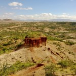 fast rewind verso Manyara
